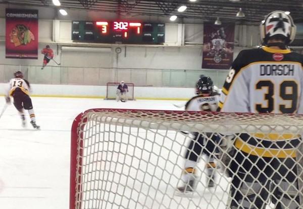 nighthawks hockey.jpg-large