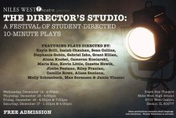 Director's Studio: A Festival of Plays