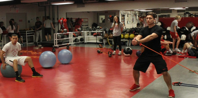 VPE vs. Strength and Conditioning: An Inside Look