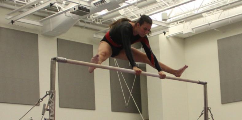 2014 Girls' Gymnastics Preview