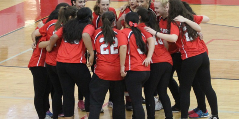 Video: Girls Softball Update