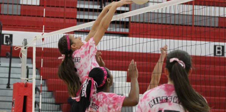 2014 Girls Varsity Volleyball Preview